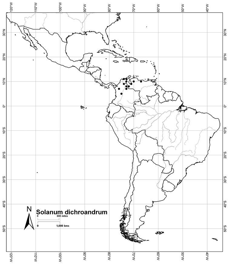 A revision of the Dulcamaroid Clade of Solanum L  (Solanaceae)
